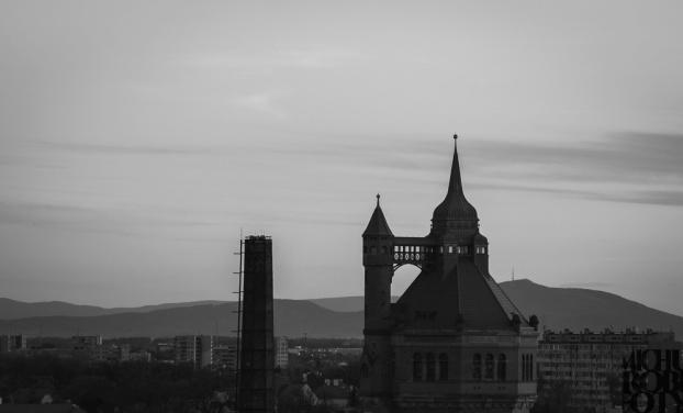 dach kwiecien-2.jpg